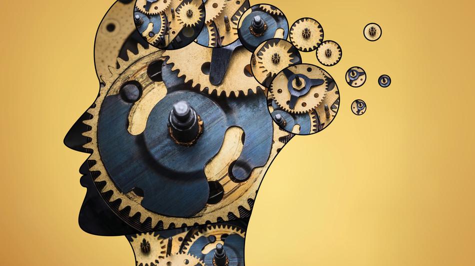 Integrative Coaching-Praxis mit neurowissenschaftlicher Fundierung