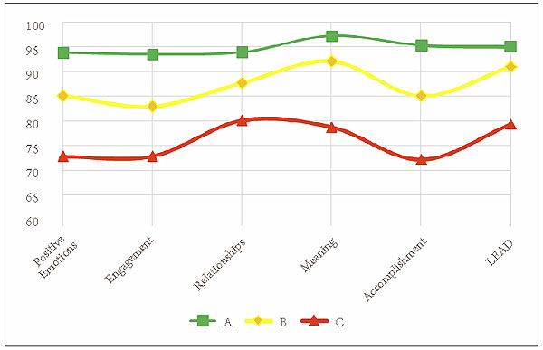 fuehrungstypologiebestimmung-clusteranalyse